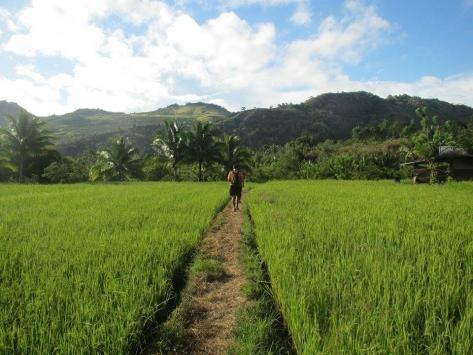 Trail beauty4