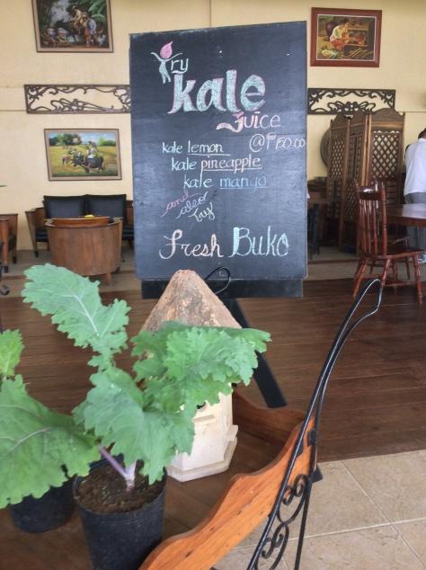 Kale smoothie3