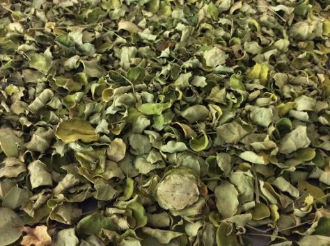 how to make fennel tea with dried leaves