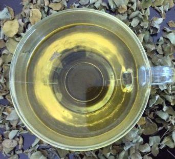 Malunggay Tea - Primed