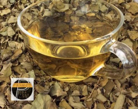 Malunggay Tea_Primed_for_your_life