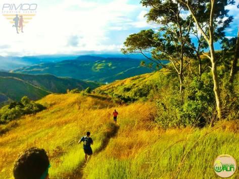 Pimco Trail run