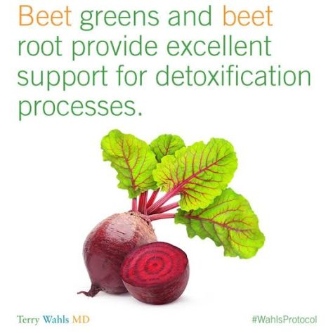 Dr. Terry Wahls2