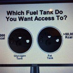Fat Tank