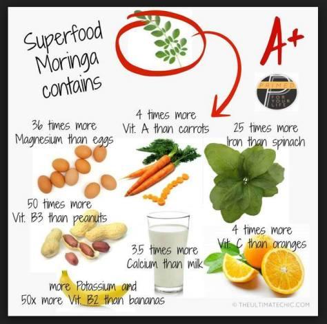 Malunggay benefits