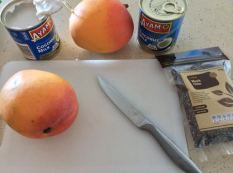 Mango Chia Pudding1