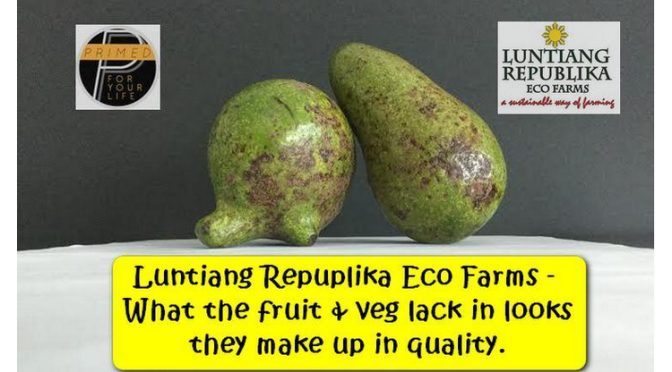 Amazing Colors of Luntiang Republika Eco Farms – A Sustainable Way of Farming
