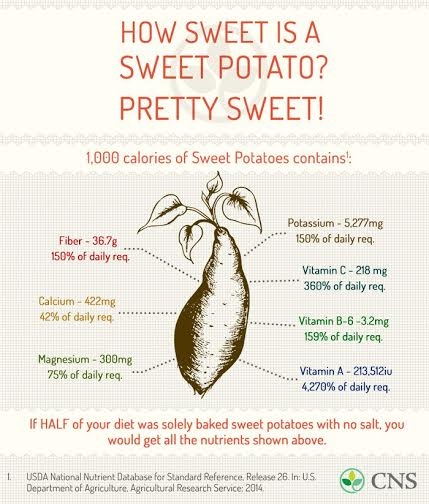 Sweet Potato info