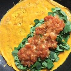 Tomato Sauce Omelette