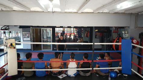 MMA Primed talk