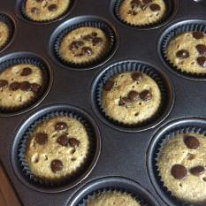 Tricia Muffin 1