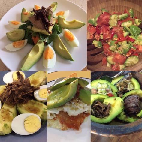 Optimal Primed Protocols avocado