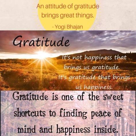 Optimal Primed Protocols gratitude
