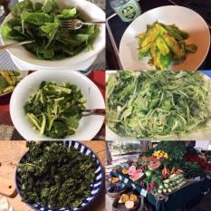 Optimal Primed Protocols green veg