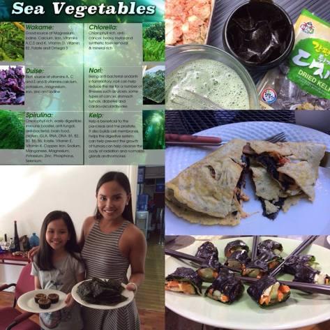 Optimal Primed Protocols seaweed
