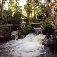 Iligan Waterfalls rock3