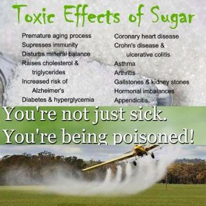 grains-are-poisoned-sugar