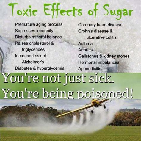 grains-are-poisoned-sugar