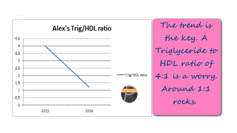 alex-trig-to-hdl