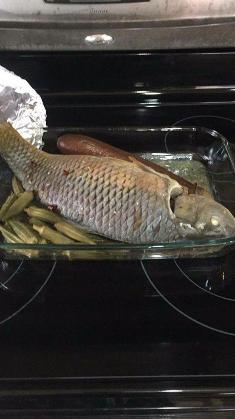 Gigi fish