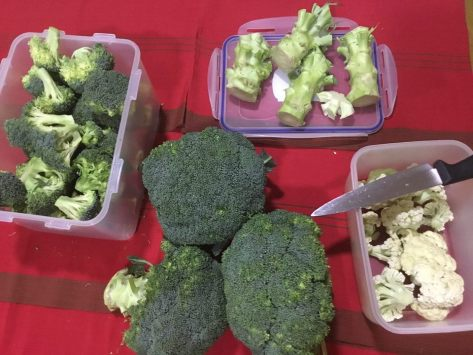 Broccoli storage1