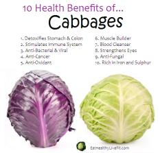 Cabbage-eathealthylivefit_com