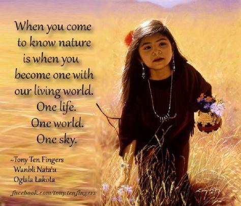 American Indian wisdom 2