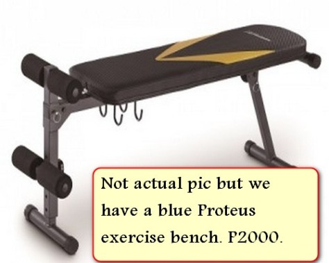 Sale Proteus workout bench - Copy